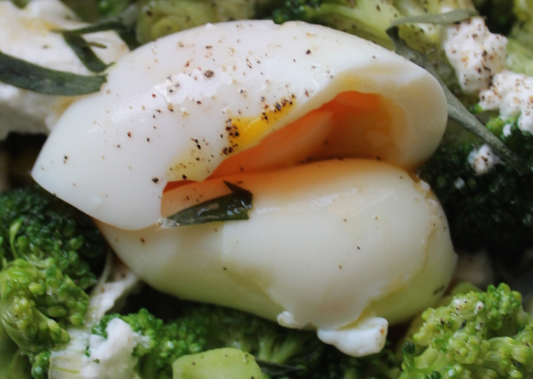 Salade_Printemps_1