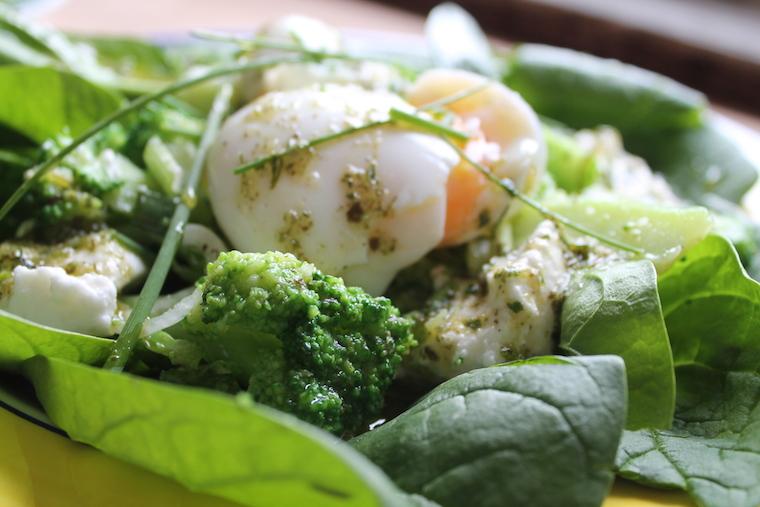 Salade_Printemps_6