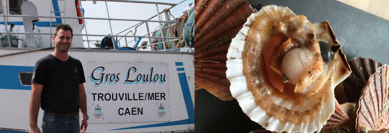 coquilles-champi-7