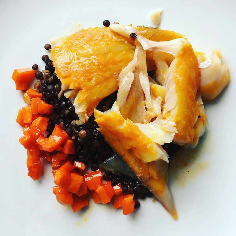 lentilles:haddock-5-