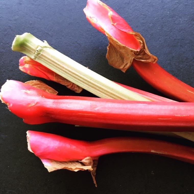tarte-rhubarbe-6-