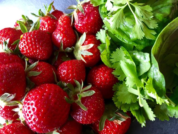 fraises-3-
